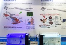 石斑鱼苗新希望!亿光电子与台大团队研发出石斑鱼专用LED灯具!